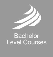 MIRA Technology Institute - Bachelor Level Courses - Button