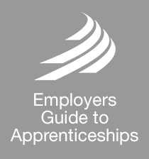 MIRA Technology Institute - Employers Guide to Apprenticeships - Button